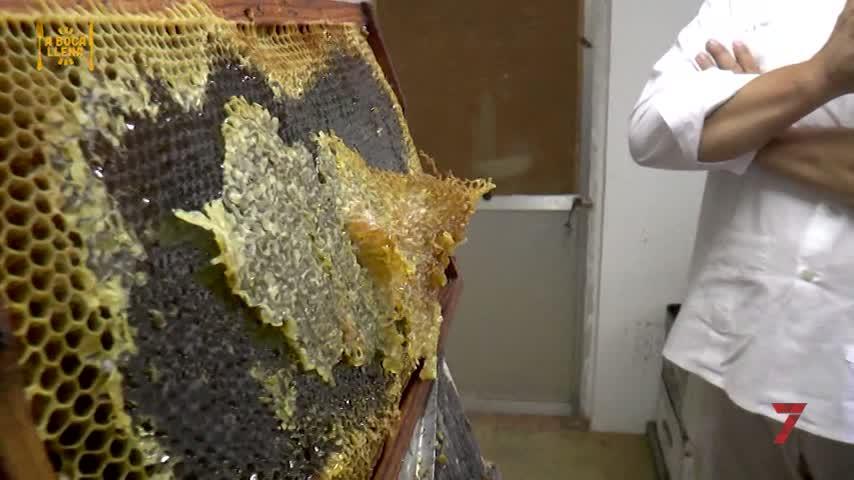 Una miel la mar de salá