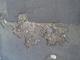 Pothole fault reported - 14 Rogart St, Glasgow, Glasgow City G40, UK