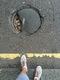 Pothole fault reported - Clerkenwell Rd, London, UK