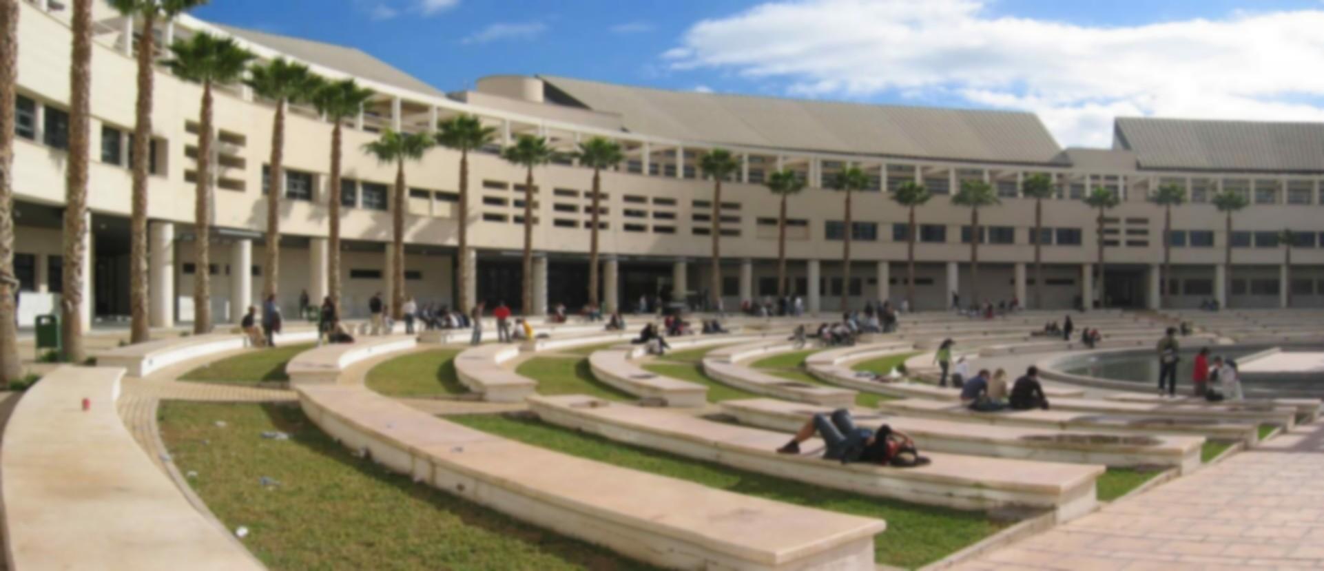 Universidad de alicante studocu for Piscina universidad alicante