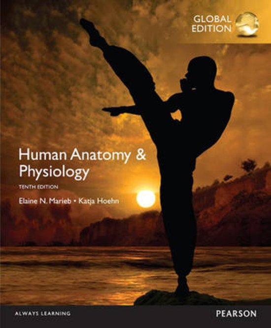 Notes Book Human Anatomy Physiology Elaine N Marieb Katja N