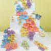 Blossom-Sugar-Art-–-6-Cutters-Mould-–-MULTI-SET-Petunia.2