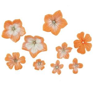 Blossom-Sugar-Art-–-6-Cutters-Mould-–-MULTI-SET-Petunia.5