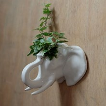 CERAMIC WALL PLANTER - ELEPHANT