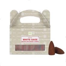 SATYA BACKFLOW DHOOP CONES - WHITE SAGE - 6X24PK