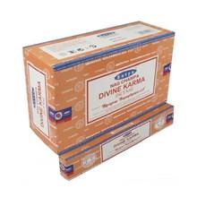 SATYA - DIVINE KARMA INCENSE STICKS - 15G X12