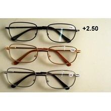 READ GLASSES METAL +2.50