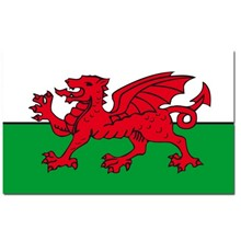 WALES 5 X 3 FLAG