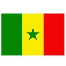 FLAG SENEGAL