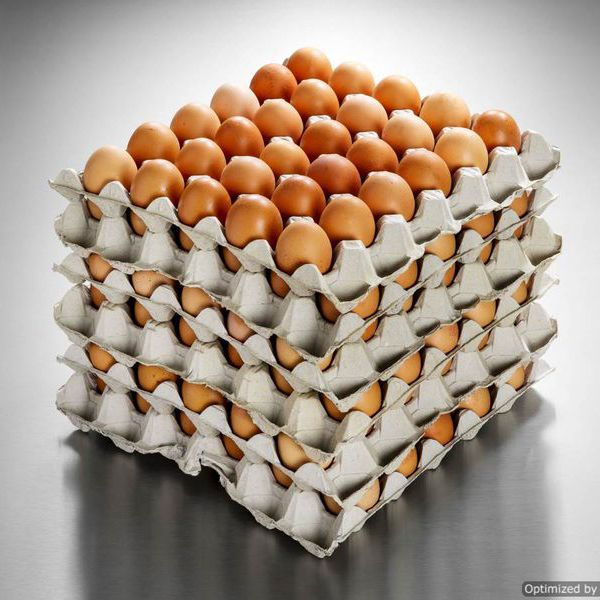 Fresh Eggs - 180