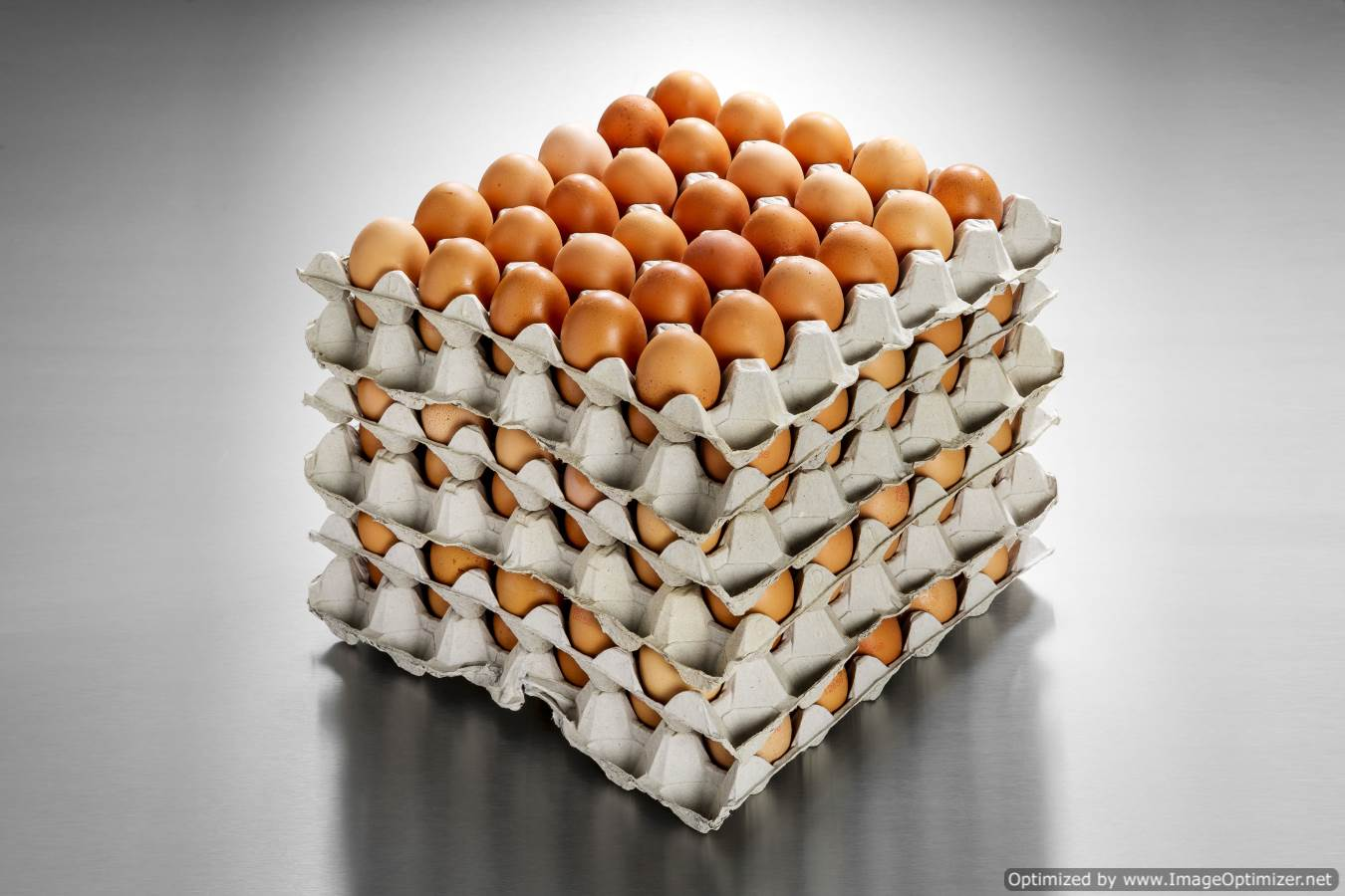 Large Eggs (180 eggs/15 Dozen)