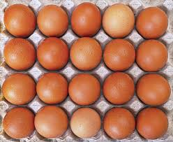 Image of Free Range Medium Eggs (180 in a Box)