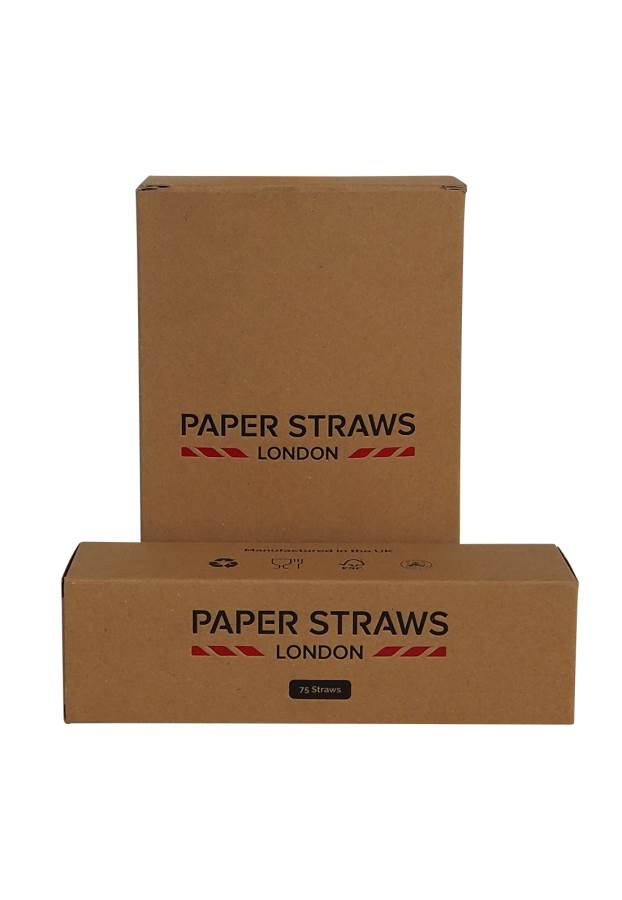 Paper Straws 1 box (250) Multi Colours in box
