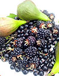 Image of Frozen Blackcurrants 1kg