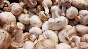 Mushrooms (per case) 2.5-3kg