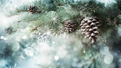 Syöpäsäätiön joulukeräys kerää varoja vähävaraisille syöpäpotilaille