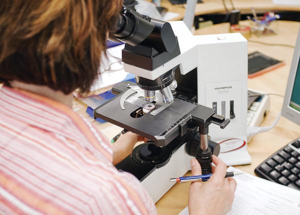mikroskooppi ja tutkija