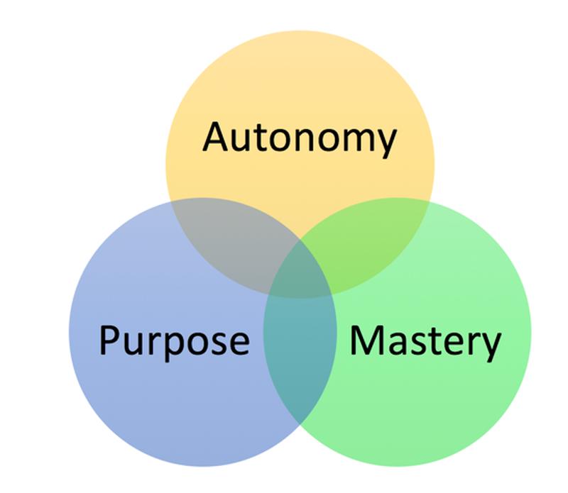 Motivation - Pink (Three Elements of Intrinsic Motivation) | tutor2u