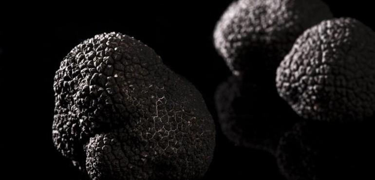 L'Atelier De La Truffe Noire