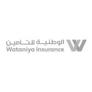 الشركه الوطنيه للتأمين