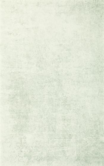Andante Bianco 25x40