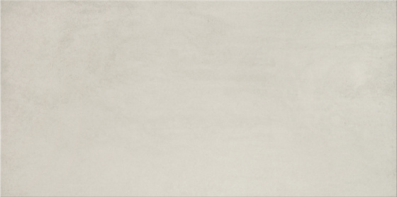 Concrete Flower Light Grey 29,7x59,8