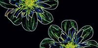 Fluorescent Flower Green Inserto 29,7x60