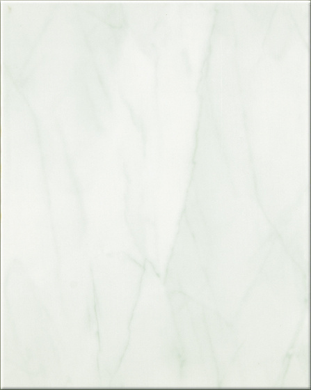 PSMN Tania Seledyn 20x25