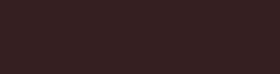 Natural Brown Elewacja 24,5x6,6