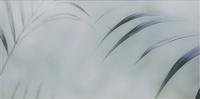 Taiga Inserto Szklane B 29,5x59,5