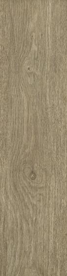 Almonte Brown Mat 29,8x119,8