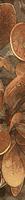 Berberis Listwa 4,5x36
