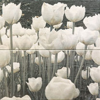 Sabaudia Flower Dekor 2-El 44,8x44,8