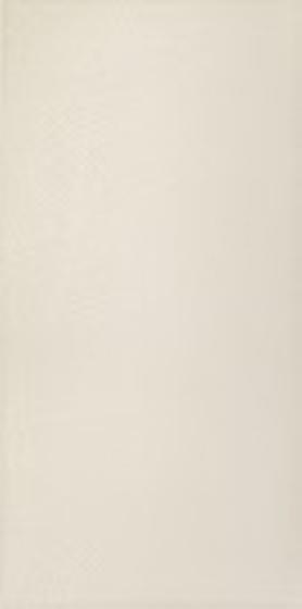 Adilio Bianco Fan 29,5x59,5