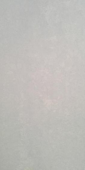 Terra Emilia Light Grey Satin 29,8x59,8
