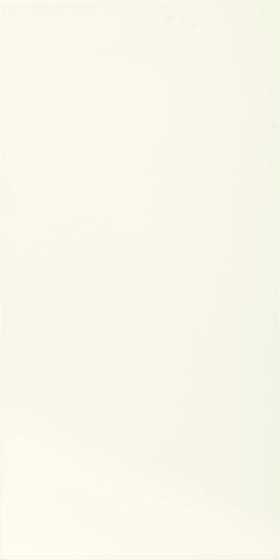 Tonnes Bianco 30x60