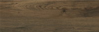 Alaya Wood Glossy 19,8x59,8