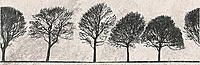 Willow Sky Inserto Tree 29x89