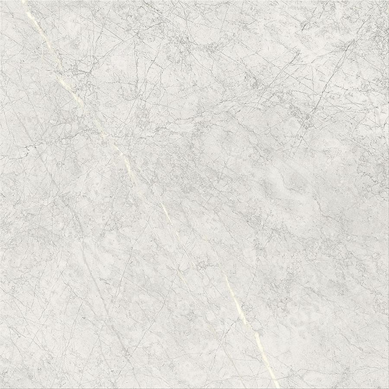 Stone Paradise Light Grey Matt 59,3x59,3