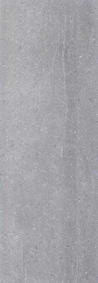 Newtone Grey 25x75