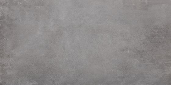 Tassero Gris 119,7x59,7x1