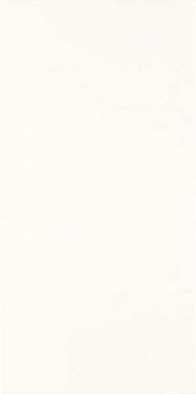 Fiori Bianco 30x60