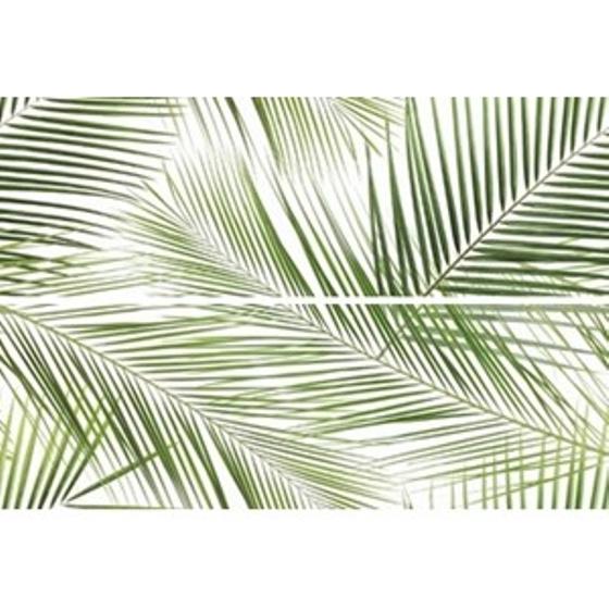 Centro Brennero Tropic Inserto 2x25x75