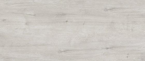 Corina Soft Grey 25x60