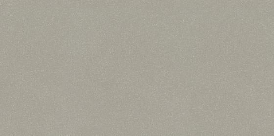 Moondust Light Grey Polished 29,5x59,4