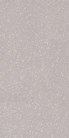 Moondust Silver Mat 59,8x119,8