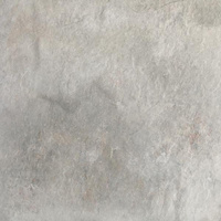 Płyta Tarasowa Burlington Silver Struktura 20 mm Mat 59,5x59,5
