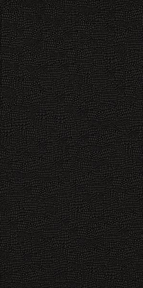Golden Obsession Nero 29,8x59,8
