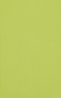 PS205 Green 25x40