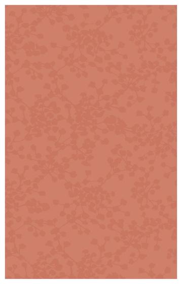 Liryka Rosa 1 25x40